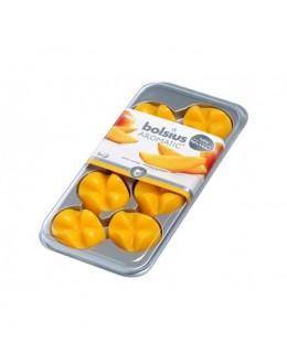 Vonný vosk Bolsius- Mango